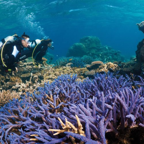 australian-great-barrier-reef-12