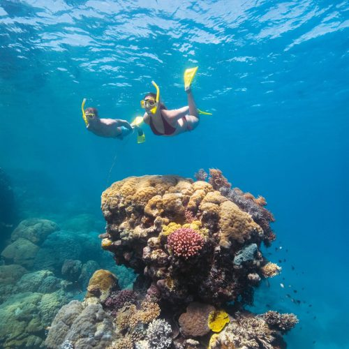 great-barrier-reef-australia-4